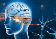 neurookulistyka